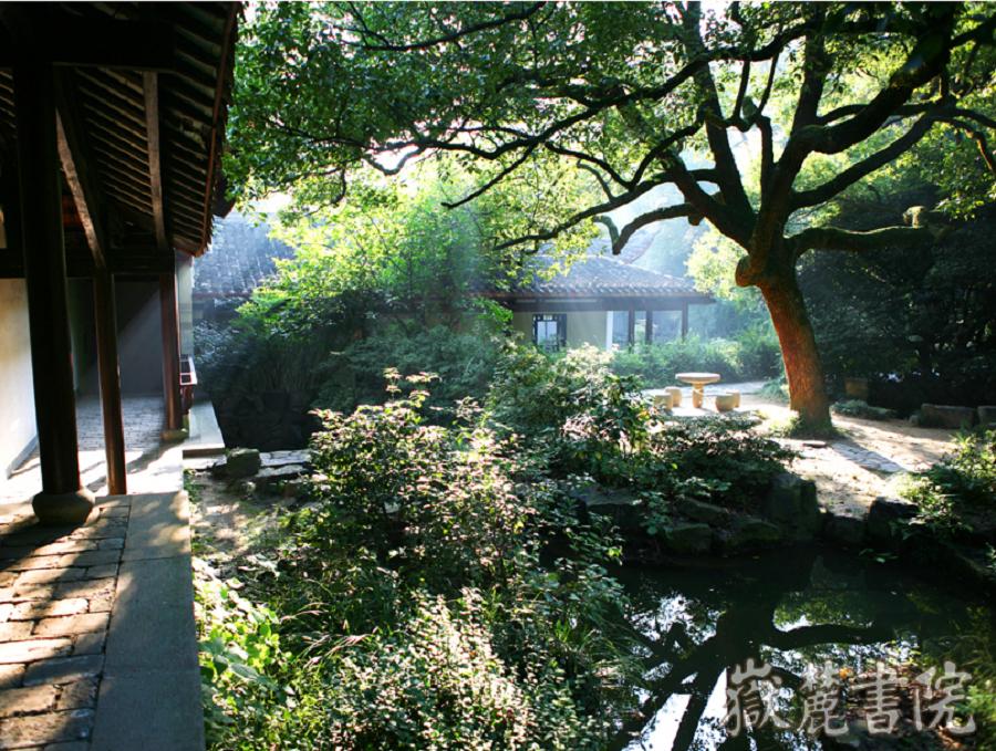 Greenery in Yuelu Academy.