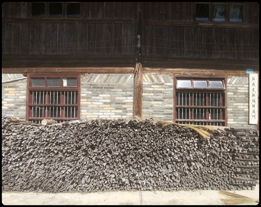 Planning ahead — this local villager has collected firewood for the cold winter months ahead.