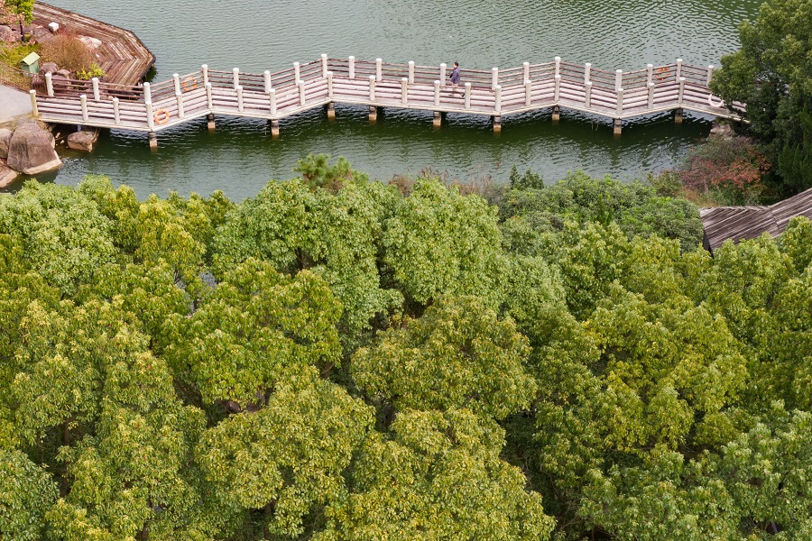 An aerial view of Baimajian Ecological Park, Suzhou, China, 28 November 2020. (CNS)