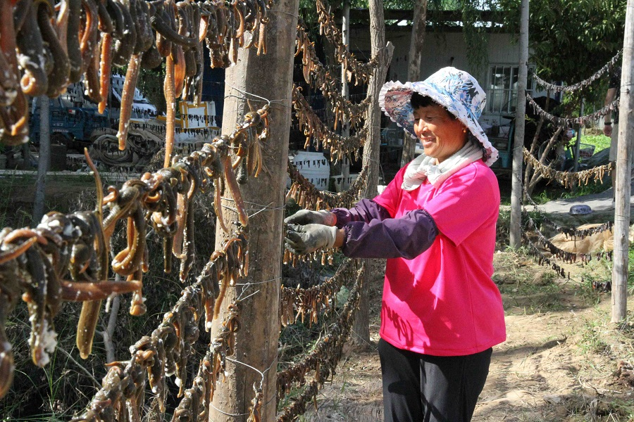 A woman is drying leeches at a village in Shanghe county, Jinan city, Shandong province, China, on 24 August 2021. (CNS)