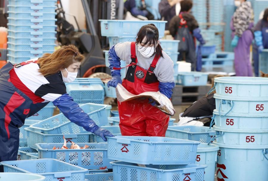 fishing fukushima