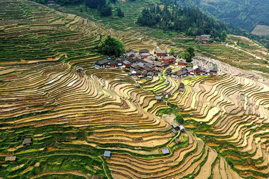 This aerial photo taken on 24 April 2021 shows a view of terraced rice paddy fields in Congjiang, Guizhou province, China. (STR/AFP)