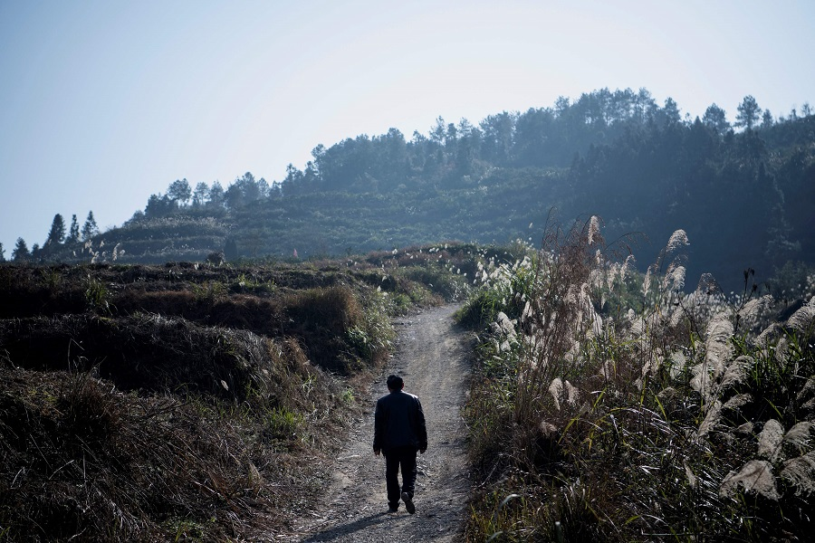 This picture taken on 12 January 2021 shows a farmer walking to his orange orchard in Baojing County, Hunan province, China. (Noel Celis/AFP)