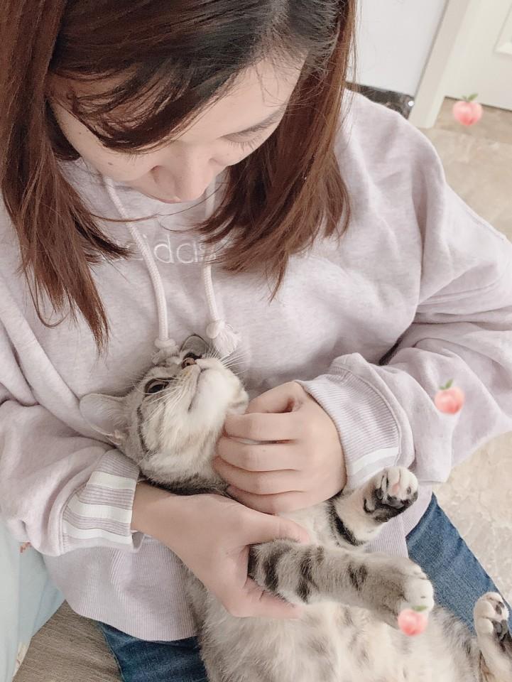 Zheng Hong