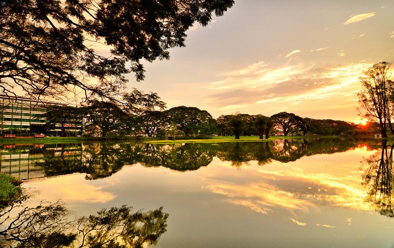 Taiping's Lake Garden. (Photo: Stanley Chuah. Internet: https://www.stanleychuahphotography.com/blog/2015/4/lake-garden-taiping-perak-malaysia)