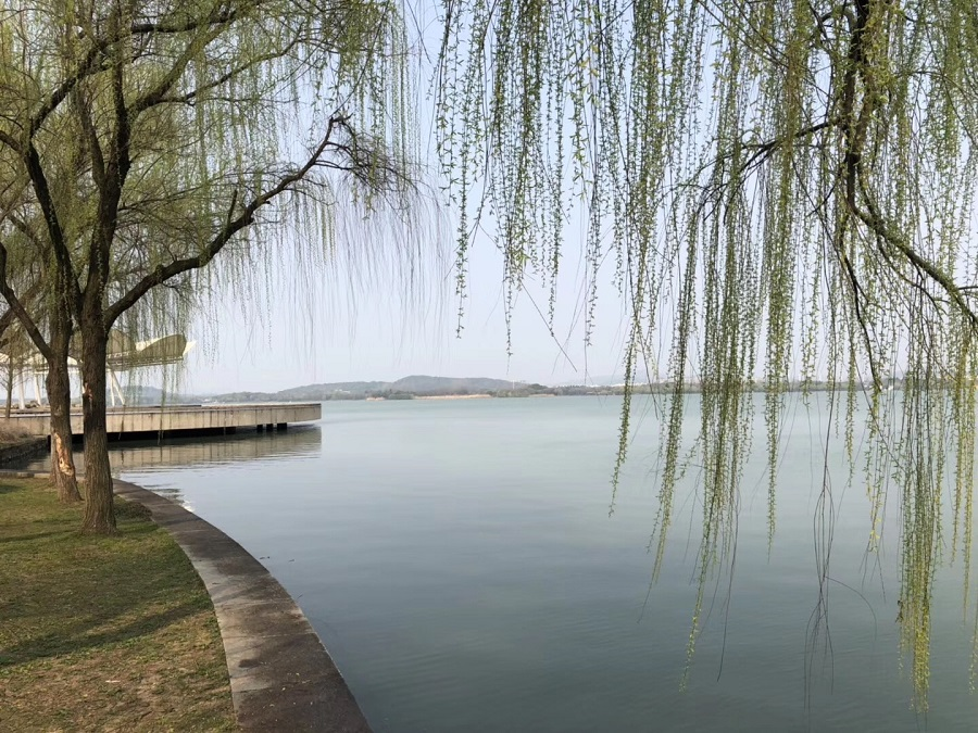 A view of Lake Tai. (Photo: Tyyyyyyyyy/Licensed under CC BY-SA 4.0)