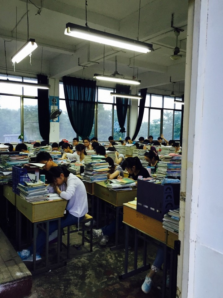 Chinese students studying hard