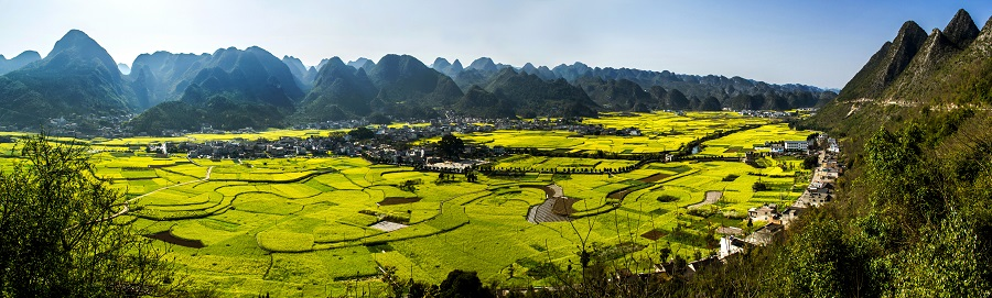rapeseed flower fields and karst mountains of Guizhou in spring. (iStock)