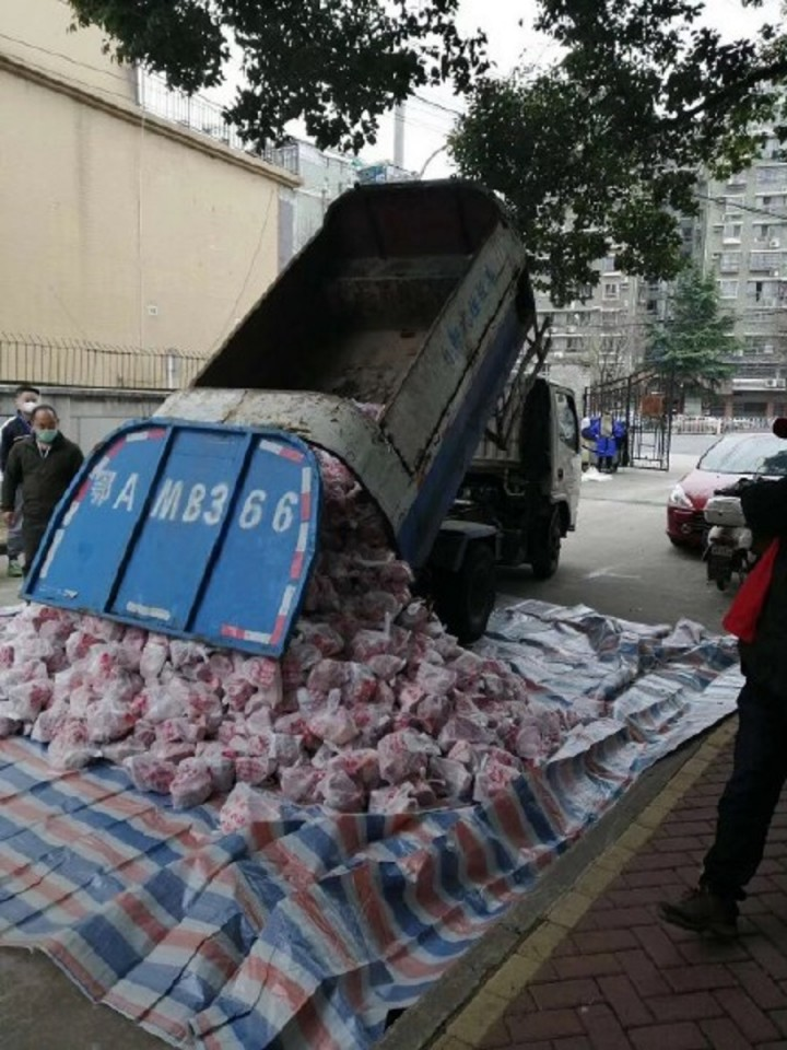 Rubbish truck used to transport pork for human consumption.