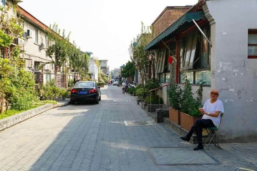 yangmeizhu greening