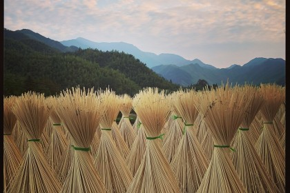 Drying bamboo sticks for various uses including chopsticks, near Anji (安吉), Zhejiang.
