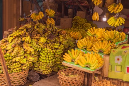Banana farmers are benefiting from President Rodrigo Duterte's personal embrace of China. (iStock)